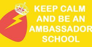 Ambassador Schools Programme